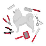 Flat grooming salon equipment set, dog haircut tools icons. Doggy groomer collection, nail clipper, cutter, Slicker and brush, com Royalty Free Stock Photos