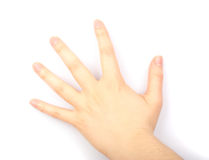 Flat of hand Stock Image