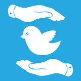 Flat hands showing bird icon Stock Photos
