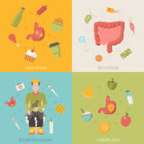 Flat healthy stomach intestines bowel organ Stock Images