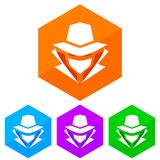 Flat, hexagon computer hacker icon. Four color variations. Isolated on white Royalty Free Stock Image