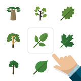 Flat Icon Ecology Set Of Garden, Foliage, Wood And Other Vector Objects. Also Includes Foliage, Timber, Oaken Elements. stock illustration