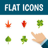 Flat Icon Leaves Set Of Aspen, Leaf, Leafage And Other Vector Objects. Also Includes Foliage, Frond, Hickory Elements. Flat Icon Leaves Set Of Aspen, Leaf Stock Photography