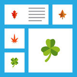 Flat Icon Maple Set Of Frond, Leafage, Aspen And Other Vector Objects. Also Includes Aspen, Alder, Linden Elements. Flat Icon Maple Set Of Frond, Leafage, Aspen Stock Photography