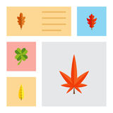 Flat Icon Maple Set Of Leafage, Frond, Aspen And Other Vector Objects. Also Includes Aspen, Foliage, Alder Elements. Flat Icon Maple Set Of Leafage, Frond Stock Photo