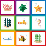 Flat Icon Marine Set Of Shark, Algae, Seaweed And Other Vector Objects. Also Includes Seaweed, Submarine, Sea Elements. Flat Icon Marine Set Of Shark, Algae Stock Photos
