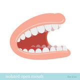 Flat icon mouth dentist obect isolated on white Royalty Free Stock Image