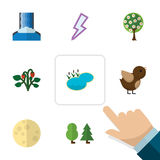 Flat Icon Natural Set Of Berry, Cascade, Lightning And Other Vector Objects. Also Includes Wood, Bird, Wing Elements. Royalty Free Stock Images
