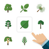 Flat Icon Nature Set Of Wood, Foliage, Decoration Tree And Other Vector Objects. Also Includes Tree, Leaves, Evergreen vector illustration