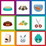 Flat Icon Pets Set Of Fishbowl, Shears, Dog Food And Other Vector Objects. Also Includes Bird, Puppy, Nutrient Elements. Flat Icon Pets Set Of Fishbowl, Shears Royalty Free Stock Images