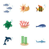 Flat Icon Sea Set Of Seafood, Algae, Cachalot And Other Vector Objects. Also Includes Scallop, Dolphin, Playful Elements. Flat Icon Sea Set Of Seafood, Algae Stock Photos