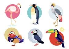Flat icons of birds set. vector illustration