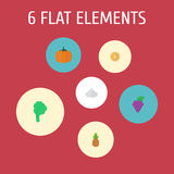 Flat Icons Citrus, Ananas, Onion And Other Vector Elements. Set Of Dessert Flat Icons Symbols Also Includes Grape, Onion Royalty Free Stock Image