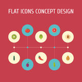 Flat Icons Exotic Dessert, Orange, Herbaceous Plant And Other Vector Elements. Set Of  Flat Icons Symbols Also Include Royalty Free Stock Images
