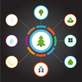 Flat Icons Foliage, Night, Tree And Other Vector Elements. Set Of Green Flat Icons Symbols Also Includes Nature, Night. Flat Icons Foliage, Night, Tree And Other Stock Image