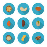 Flat icons nuts Stock Photos