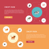 Flat Icons Pony, Rooster, Swine And Other Vector Elements. Set Of Zoology Flat Icons Symbols Also Includes Rooster Royalty Free Stock Image