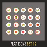 Flat icons set 17 Royalty Free Stock Photography