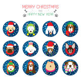Flat Icons Set: : Christmas, Various Dog Breeds Stock Images