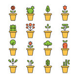 Flat icons set of pot plants garden. Flowers and herbs Royalty Free Stock Photo