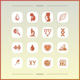 Flat icons set Royalty Free Stock Images