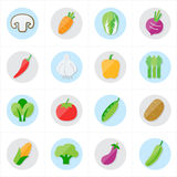Flat Icons Vegetables Icons Vector Illustration Royalty Free Stock Image