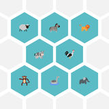 Flat Icons Waterbird, Trunked Animal, Wildcat And Other Vector Elements. Set Of Animal Flat Icons Symbols Also Includes Stock Photography