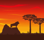 Flat illustration about africa design Royalty Free Stock Photography