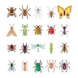Flat insects icons set. Butterfly, dragonfly, spiders, ant isolated on white background. Vector insect ladybug and beetle, dragonfly and butterfly illustration Royalty Free Stock Images