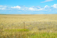 Flat lands and open fields in Montana. Fenced in flat lands in Montana stock photos