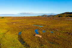 Flat Landscape. Water Puddles Flat Plateau Landscape Royalty Free Stock Images