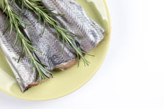 Flat lay above plate with raw hake fish and rosemary branches.  Royalty Free Stock Photo