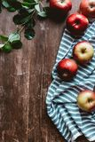 flat lay with arranged ripe apples, linen and green leaves stock photography