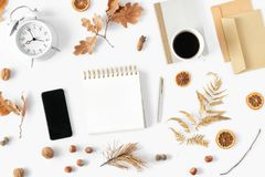 Flat lay autumn feminine home office workspace top view stylish office royalty free stock photos