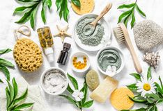 Flat lay beauty skin care ingredients, accessories. Natural beauty products on a light background. Top view royalty free stock images