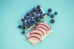 Flat lay of blueberry apple sandwich on pastel colored background. royalty free stock image
