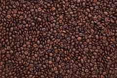 Flat lay of brown roasted coffee bean can be used as a backgroun Royalty Free Stock Photos