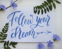 Flat lay with brush calligraphy. Flat lay composition with motivational brush calligraphy of Follow your dream and blue chicory flowers for poster, postcard Stock Photography