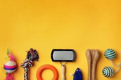 Flat lay composition with accessories for dog and cat. On color background. Pet care stock photography