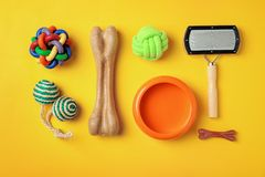 Flat lay composition with accessories for dog and cat. On color background. Pet care royalty free stock photos