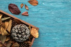 Flat lay composition for autumn holidays greeting cards. Pine cones, oak branches, acorns, leaves, chestnuts in a wooden box on th Stock Images
