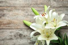 Flat lay composition with beautiful blooming lily flowers stock photos