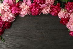 Flat lay composition with beautiful peonies on wooden background stock photography