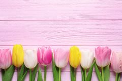 Flat lay composition of beautiful spring tulips on wooden background. International Women`s Day. Flat lay composition of beautiful spring tulips on wooden stock photos