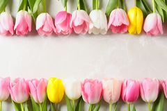 Flat lay composition of beautiful tulips on marble background, space for text. International Women`s Day royalty free stock image