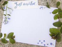 Flat lay composition with calligraphy lettering of Just remember decorated with forget-me-not flowers and green leaves Royalty Free Stock Images