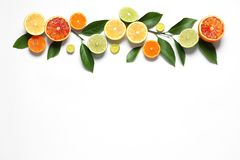 Flat lay composition with different citrus fruits royalty free stock image