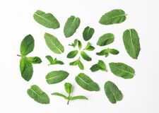 Flat lay composition with fresh green mint leaves. On white background Stock Photography