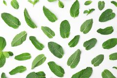 Flat lay composition with fresh green mint leaves. On white background Royalty Free Stock Images