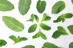 Flat lay composition with fresh green mint leaves. On white background Stock Photo